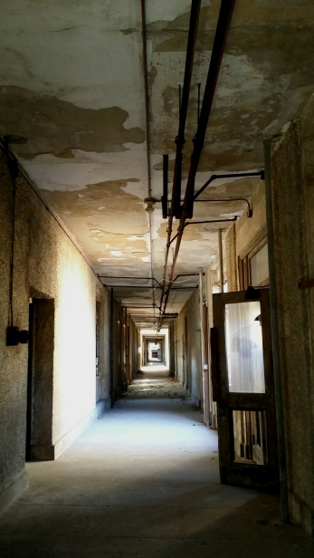 "The ""Spine"" Main Corridor Leading to the Wings"